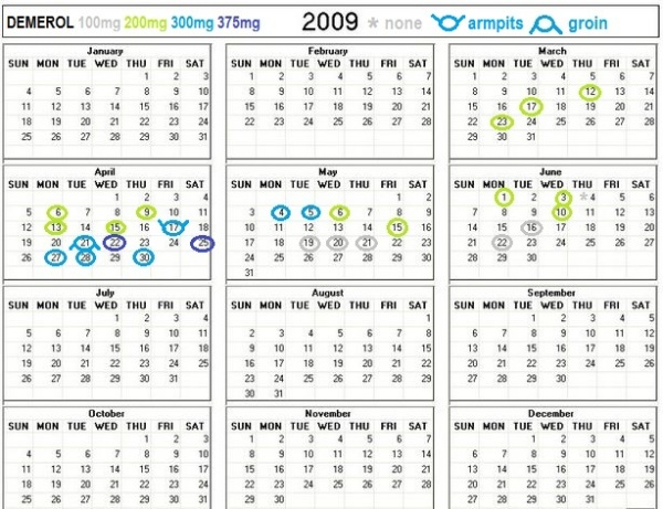 2009 printable calendar