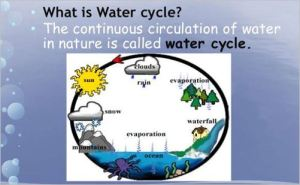 Constant lies about Michael Jackson are like water cycle - they morph and change form but never end