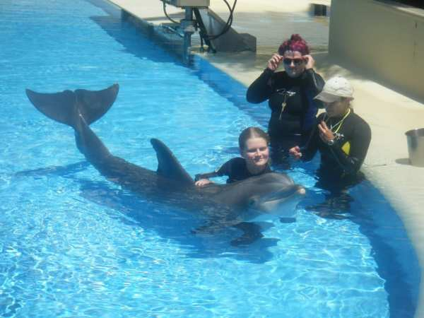 mirage-hotel-dophin-habitat2